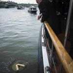 Wreath is cast upon the water of the river Thames